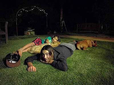Artificial lawn and pets