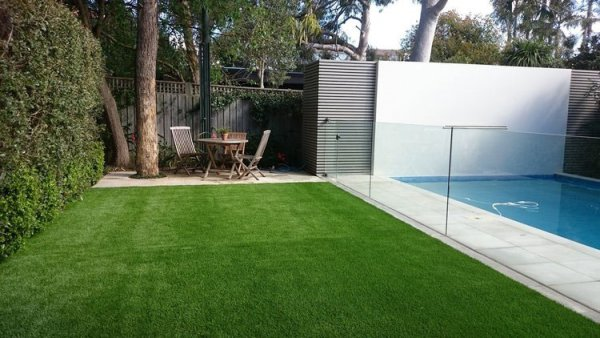 Turf by Swimming Pool in Sydney