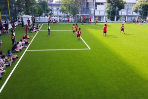 Artificial grass playing field