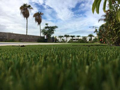 Fake grass gold coast