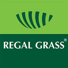 regal grass